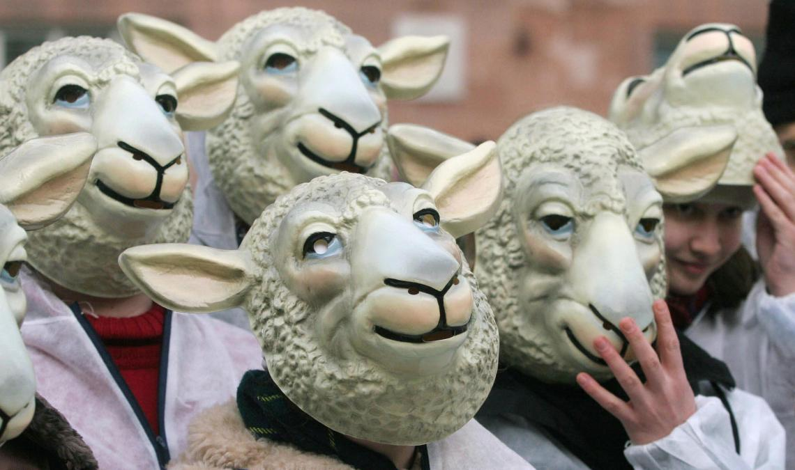 "FRANKFURT/MAIN, Germany:  Demonstrators wearing sheep masks demonstrate 14 March 2005 in front of the Pauls Church in Frankfurt/Main, where British scientist Ian Wilmut from the Roslin Institute in Edinburgh is awarded the ""Paul Ehrlich and Ludwig Darmstaedter - Prize"" for advances in science. Wilmut is the scientist who created Dolly the sheep (R), the world's first cloned mammal in 1996. Britain 07 February 2005 granted Wilmut a licence to clone human embryos for medical research, triggering an outcry among opposition groups. Wilmut, dismissing fears that his work would lead to reproductive cloning, said the licence would allow him and his team to study the fatal motor neuron disease (MND).  AFP PHOTO   DDP/MARTIN OESER   GERMANY OUT  (Photo credit should read MARTIN OESER/AFP/Getty Images)"